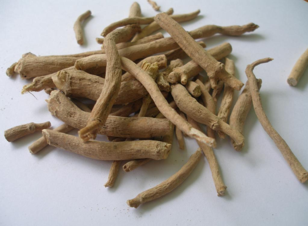 Silene Capensis Root (African Dream Root) Sticks